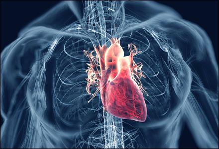 24. gejala jantung koroner 1