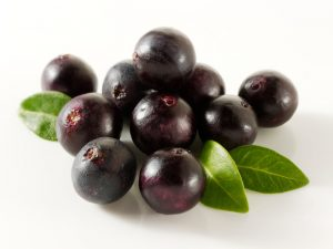 Acai ; berry ; berries ; tropical ; super ; fruit ; anti ; oxidant ; antioxidant ; healthy ; health ; food ; drink ; brazil ; amazon ; rain ; forest ; produce ; medicinal ; heart ; medicine ; alternative ; heal ; prevent ; attack ; preventative