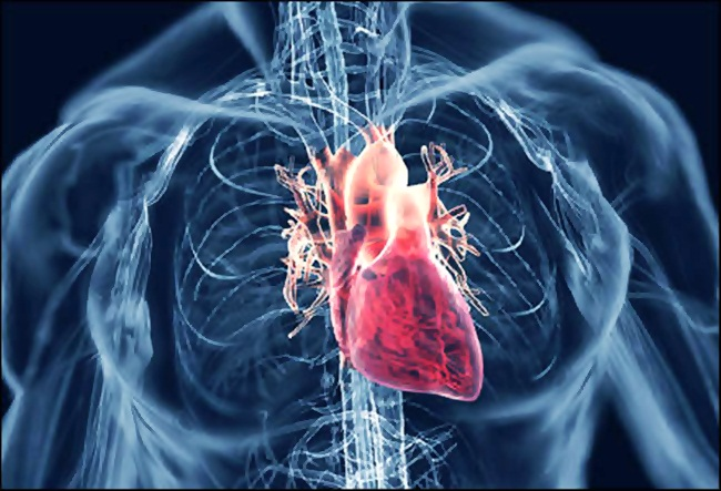 Mengenal Gejala Penyakit Jantung Rematik