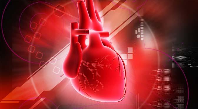 Informasi Pengertian Penyakit Jantung Koroner