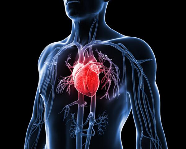Pencegahan Penyakit Jantung