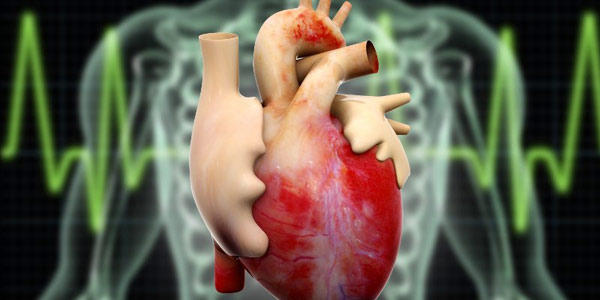Mengenali Penyebab Jantung Lemah