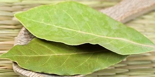 Obat Herbal Jantung di Lingkungan Sekitar Kita