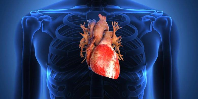 Obat Jantung Koroner Paling Ampuh tanpa Efek Samping