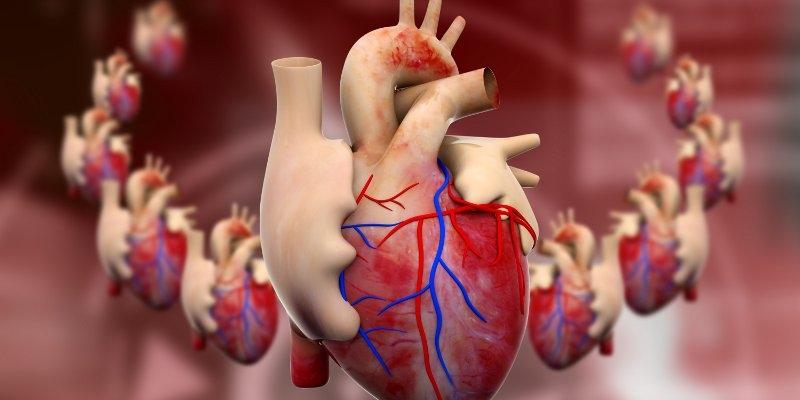 4 Obat Jantung Lemah Paling Ampuh