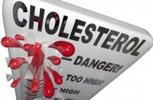 memantau kolesterol